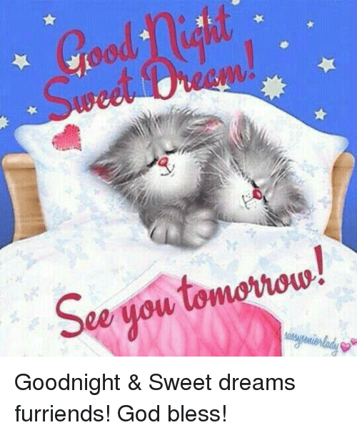 See Gow Goodnight Sweet Dreams Furriends God Bless God Meme On