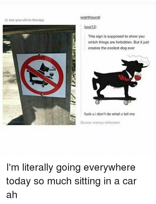 Memes, Shit, and Fuck: see you all-in-therapy  wighthound:  luwzi12:  This sign is supposed to show you  which things are forbidden. But it just  creates the coolest dog ever  fuck uidon't do what u tell me  SS Sourcoc merry shit scram I'm literally going everywhere today so much sitting in a car ah