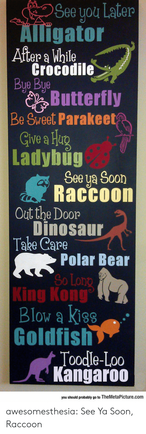 Dinosaur, Goldfish, and Soon...: See you Later  Alligator  After a While  Crocodile  Bye Bye  Butterfly  Be Sweet Parakeet  Give a Heg  Ladybug  See ya Soon  Raccoon  Out the Door  Dinosaur  Take Care  Polar Bear  So Long  King Kong  Blow a Kiss  Goldfish  Toodle-Loo  Kangaroo  you should probably go to TheMetaPicture.com awesomesthesia:  See Ya Soon, Raccoon