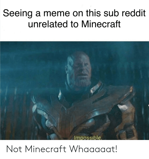 Seeing a Meme on This Sub Reddit Unrelated to Minecraft
