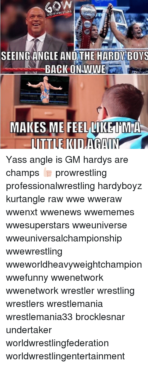 Memes, Wrestling, and World Wrestling Entertainment: SEEING ANGLE AND THE HARDY BOYS  BACK ON WWE  MAKES ME FEEL LIKE IMA  LITTLE KID AGAIN Yass angle is GM hardys are champs 👍🏻 prowrestling professionalwrestling hardyboyz kurtangle raw wwe wweraw wwenxt wwenews wwememes wwesuperstars wweuniverse wweuniversalchampionship wwewrestling wweworldheavyweightchampion wwefunny wwenetwork wwenetwork wrestler wrestling wrestlers wrestlemania wrestlemania33 brocklesnar undertaker worldwrestlingfederation worldwrestlingentertainment