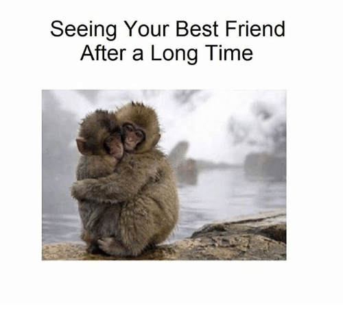 Seeing Your Best Friend After a Long Time | Meme on ME ME