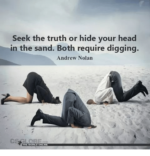 Image result for hiding with head in the sand