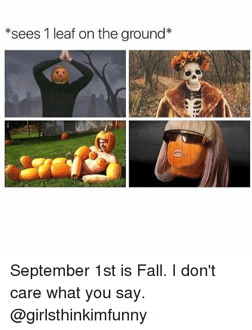 Fall, Funny, and Girl Memes: *sees 1 leaf on the ground* September 1st is Fall. I don't care what you say. @girlsthinkimfunny