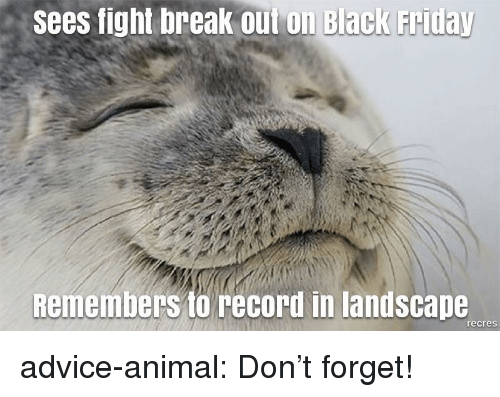 Advice, Tumblr, and Animal: sees fight break Out on Black Fritay  Remembers to record in landscape  recres advice-animal:  Don't forget!