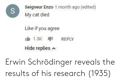 Cat, Hide, and You: Seigneur Enzo 1 month ago (edited)  My cat died  Like if you agree  REPLY  Hide replies n Erwin Schrödinger reveals the results of his research (1935)