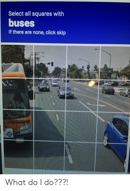 Click, All, and What: Select all squares with  buses  If there are none, click skip What do I do???!