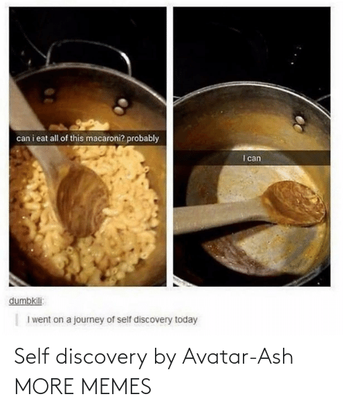 Ash, Dank, and Memes: Self discovery by Avatar-Ash MORE MEMES