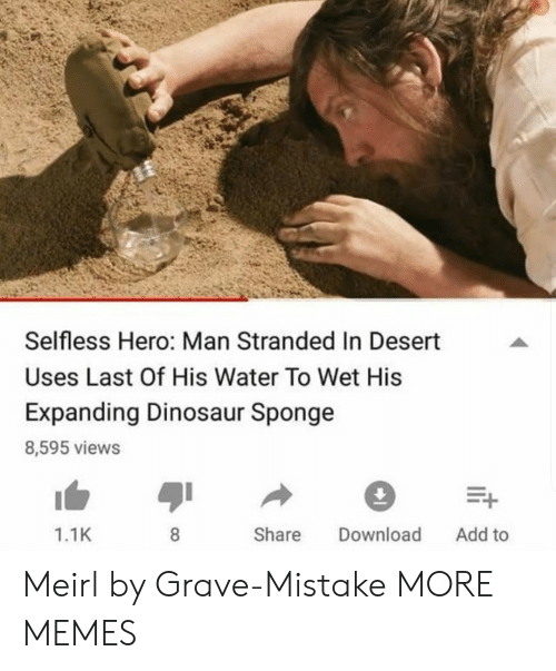 Dank, Dinosaur, and Memes: Selfless Hero: Man Stranded In Desert  Uses Last Of His Water To Wet His  Expanding Dinosaur Sponge  8,595 views  1.1K  Share Download Add to Meirl by Grave-Mistake MORE MEMES