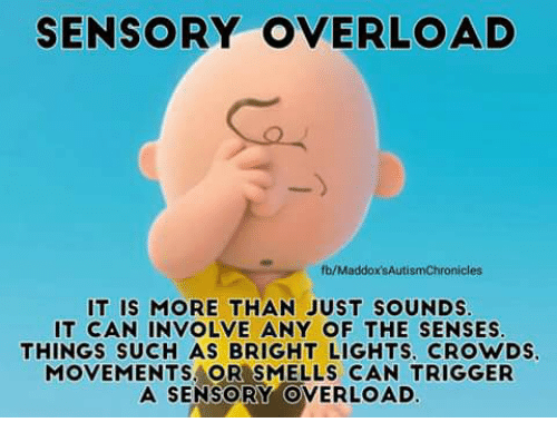 Memes, Smell, and 🤖: SENSORY OVERLOAD  fb/MaddoxsAutismChronicles  IT IS MORE THAN JUST SOUNDS  IT CAN INVOLVE ANY OF THE SENSES  THINGS SUCH AS BRIGHT LIGHTS. CROWDS.  MOVEMENTS OR SMELLS CAN TRIGGER  A SENSORY OVERLOAD