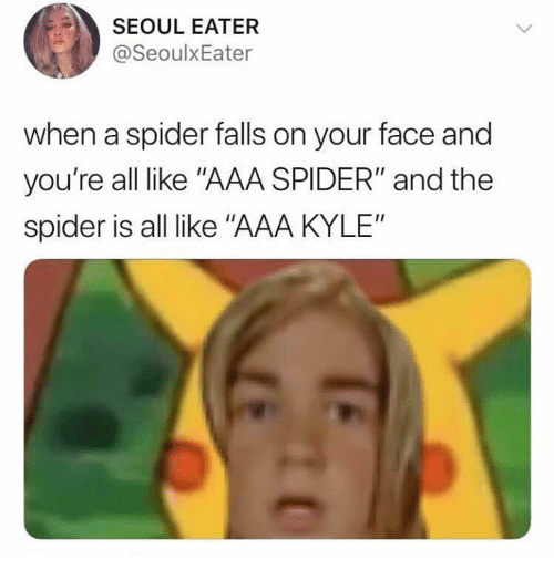 """Spider, Aaa, and Seoul: SEOUL EATER  @SeoulxEater  when a spider falls on your face and  you're all like """"AAA SPIDER"""" and the  spider is all like """"AAA KYLE"""""""