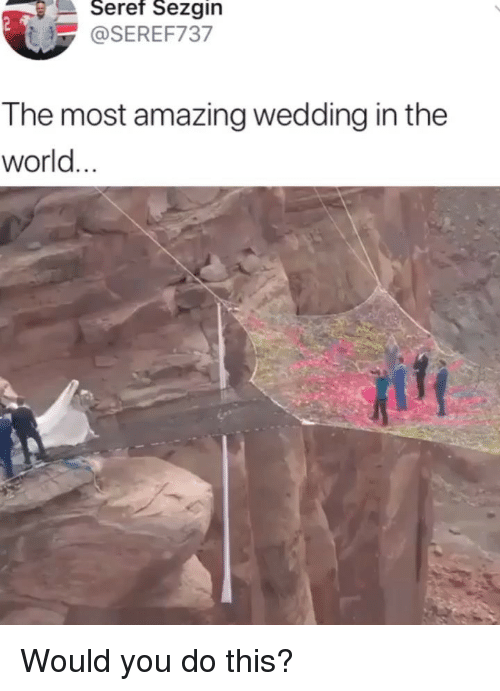 Memes, World, and Wedding: Seref  Sezgin  @SEREF737  The most amazing wedding in the  world Would you do this?