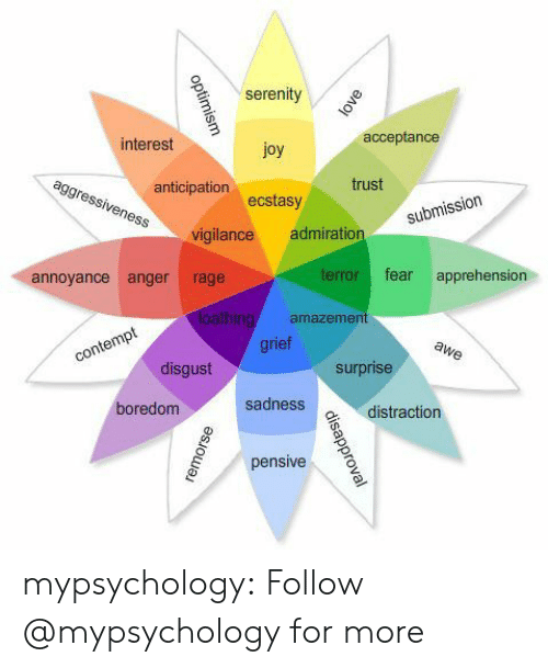 Tumblr, Blog, and Admiration: serenity  interest  acceptance  joy  ecstasy  vigilance admiration  anticipation  trust  submiss  annoyance anger rage  terror fear apprehension  amazemen  rie  disgust  surprise  oredom  sadness  vdistraction  pensive mypsychology: Follow @mypsychology for more
