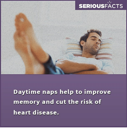 Memes, Heart, and Help: SERIOUSFACTS  Daytime naps help to improve  memory and cut the risk of  heart disease.