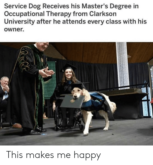 Happy, Masters, and Dog: Service Dog Receives his Master's Degree in  Occupational Therapy from Clarkson  University after he attends every class with his  owner. This makes me happy