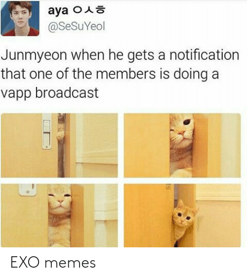 Memes, Exo, and One: @SeSuYeol  Junmyeon when he gets a notification  that one of the members is doing a  vapp broadcast EXO memes