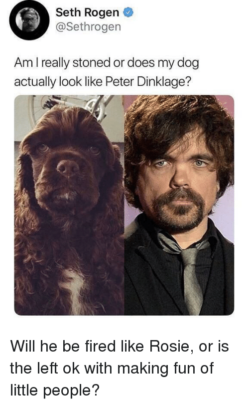 Seth Rogen, Rosie, and Peter Dinklage: Seth Rogen  @Sethrogen  Am Ireally stoned or does my dog  actually look like Peter Dinklage?