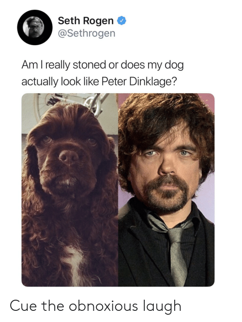 Seth Rogen, Peter Dinklage, and Dog: Seth Rogen  @Sethrogen  Am l really stoned or does my dog  actually look like Peter Dinklage? Cue the obnoxious laugh