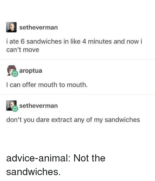 Advice, Tumblr, and Animal: setheverman  i ate 6 sandwiches in like 4 minutes and now i  can't move  earoptua  I can offer mouth to mouth.  setheverman  don't you dare extract any of my sandwiches advice-animal:  Not the sandwiches.