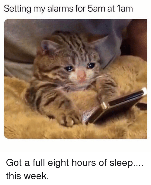 Girl Memes, Sleep, and Got: Setting my alarms for 5am at 1am Got a full eight hours of sleep.... this week.