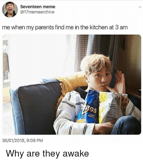 Seventeen Meme Me When My Parents Find Me In The Kitchen At 3 Anm