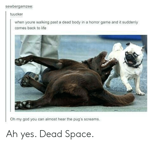 God, Life, and Oh My God: sewbergamzee  tuucker  when youre walking past a dead body in a horror game and it suddenly  comes back to life  Oh my god you can almost hear the pug's screams. Ah yes. Dead Space.