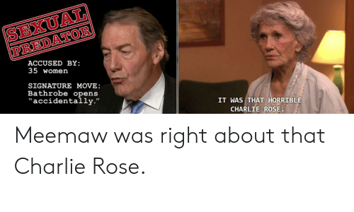 "Charlie, The Office, and Predator: SEXUAL  PREDATOR  ACCUSED BY:  35 women  SIGNATURE MOVE:  Bathrobe opens  accidentally.""  IT WAS THAT HORRIBLE  CHARLIE ROSE Meemaw was right about that Charlie Rose."