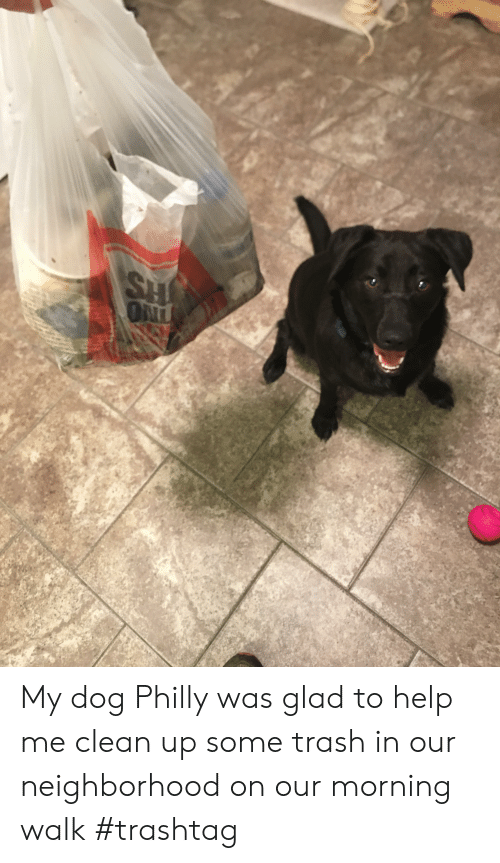 Trash, Help, and Dog: SH  ON My dog Philly was glad to help me clean up some trash in our neighborhood on our morning walk #trashtag
