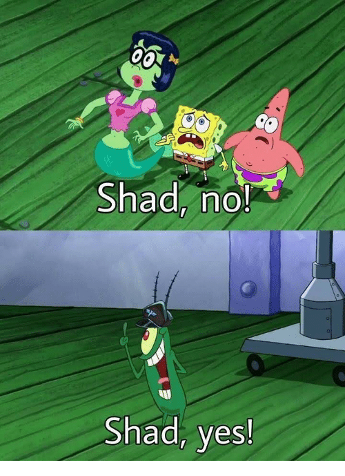 Image result for shad yes