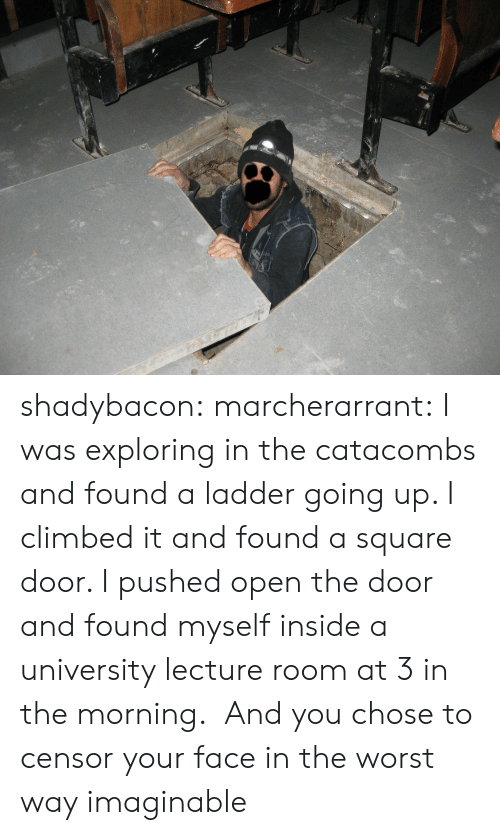 Target, The Worst, and Tumblr: shadybacon: marcherarrant: I was exploring in the catacombs and found a ladder going up. I climbed it and found a square door. I pushed open the door and found myself inside a university lecture room at 3 in the morning.  And you chose to censor your face in the worst way imaginable
