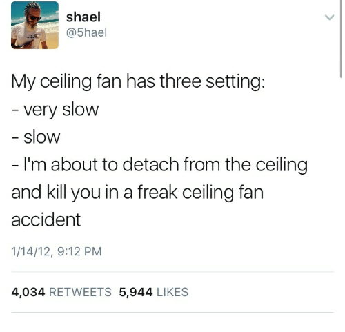 Three Ceiling Fan And You Shael 5hael My Has