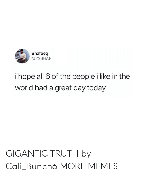 Dank, Memes, and Target: Shafeeq  @Y2SHAF  i hope all 6 of the people i like in the  world had a great day today GIGANTIC TRUTH by Cali_Bunch6 MORE MEMES