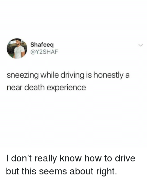 Driving, Death, and Drive: Shafeeq  @Y2SHAF  sneezing while driving is honestly a  near death experience I don't really know how to drive but this seems about right.