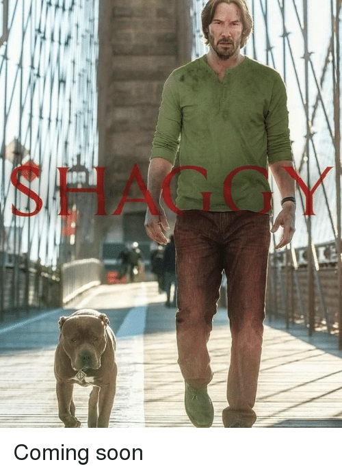 Soon..., Shaggy, and Coming Soon: SHAGGY Coming soon