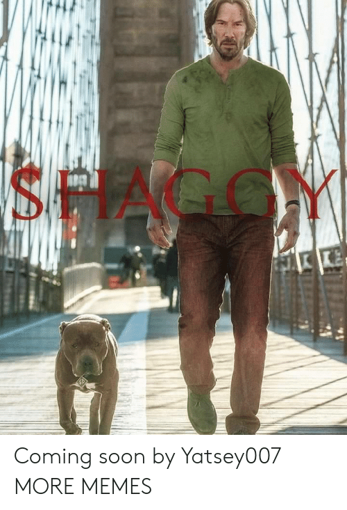 Dank, Memes, and Soon...: SHAGGY Coming soon by Yatsey007 MORE MEMES