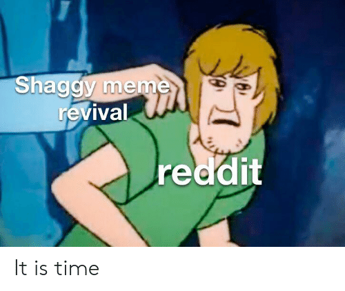Funny, Meme, and Reddit: Shaggy meme  revival  reddit It is time