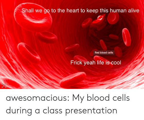 Alive, Frick, and Life: Shall we go to the heart to keep this human alive  Red blood cells  Frick yeah life is cool awesomacious:  My blood cells during a class presentation