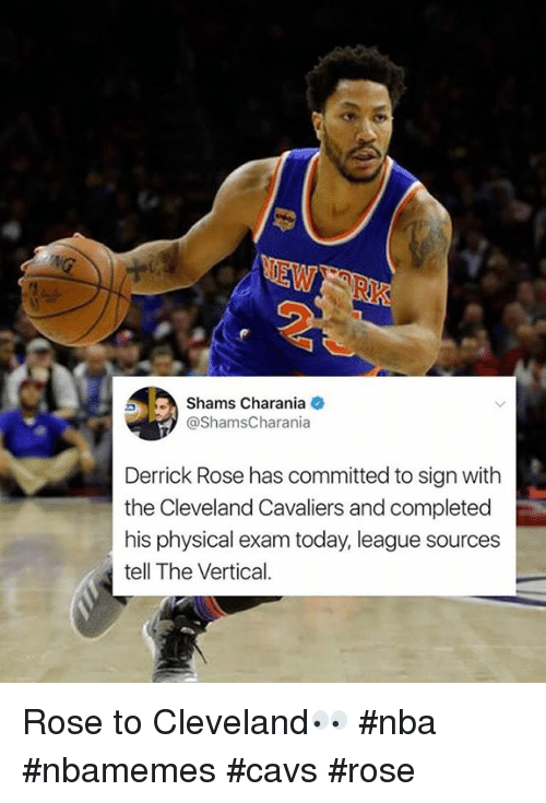 f73eafdaedf Shams Chara Nia Derrick Rose Has Committed to Sign With the ...