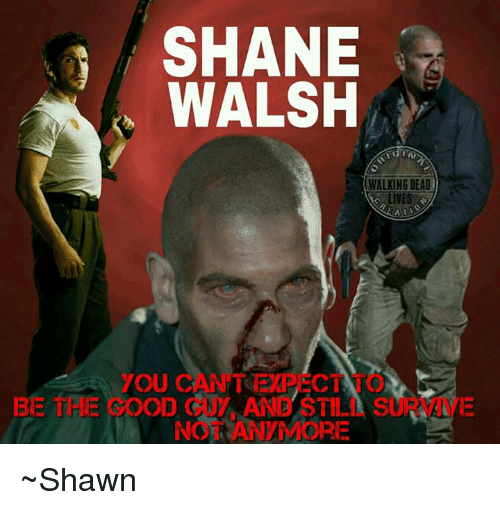Shane Walsh Walking Dead Lives You Can Be The Good Cny Anb Still Su