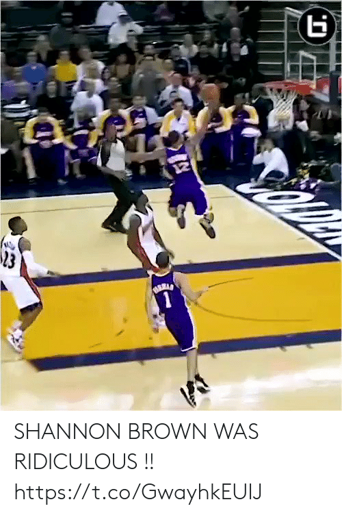Memes, 🤖, and Shannon Brown: SHANNON BROWN WAS RIDICULOUS !! https://t.co/GwayhkEUIJ
