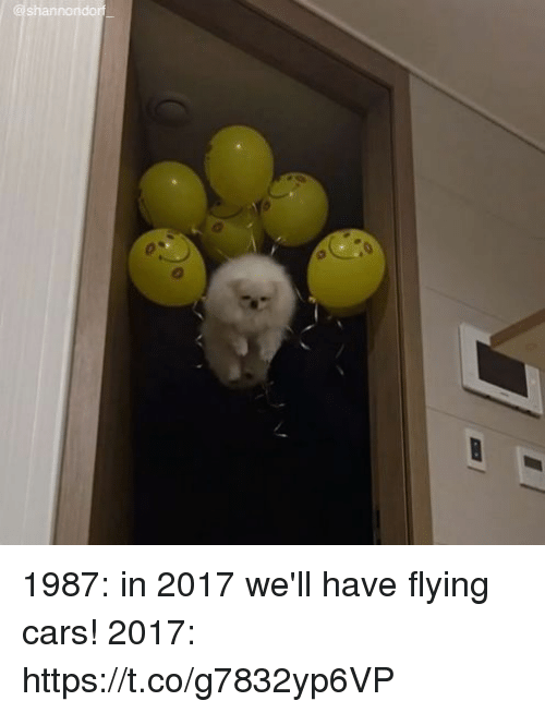 Cars, Girl Memes, and Flying Cars: shannondor 1987: in 2017 we'll have flying cars! 2017: https://t.co/g7832yp6VP
