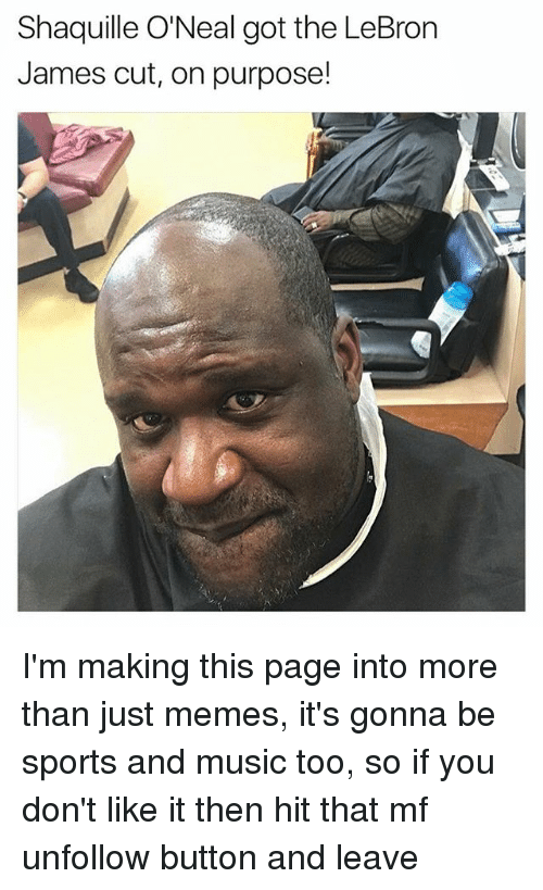 LeBron James, Memes, and Music: Shaquille O'Neal got the LeBron  James cut, on purpose! I'm making this page into more than just memes, it's gonna be sports and music too, so if you don't like it then hit that mf unfollow button and leave