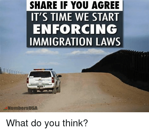 Memes, Immigration, and 🤖: SHARE IF YOU AGREE  IT'S TIME WE START  ENFORCING  IMMIGRATION LAWS  NumbersUSA What do you think?