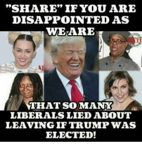 """Disappointed, Memes, and Trump: """"SHARE"""" IF YOU ARE  DISAPPOINTED AS  WEARE  I'I  THAT SO MANY  LIBERALS LIED ABOUT  LEAVING IF TRUMP WAS  ELECTED!"""