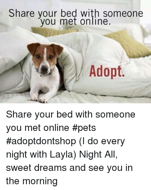 Share Your Bed With Someone You Met Online Share You Bed