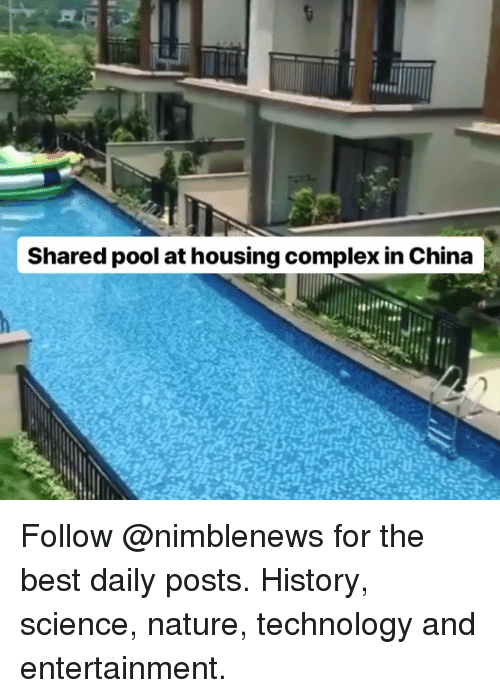 Complex, Memes, and China: Shared pool at housing complex in China Follow @nimblenews for the best daily posts. History, science, nature, technology and entertainment.