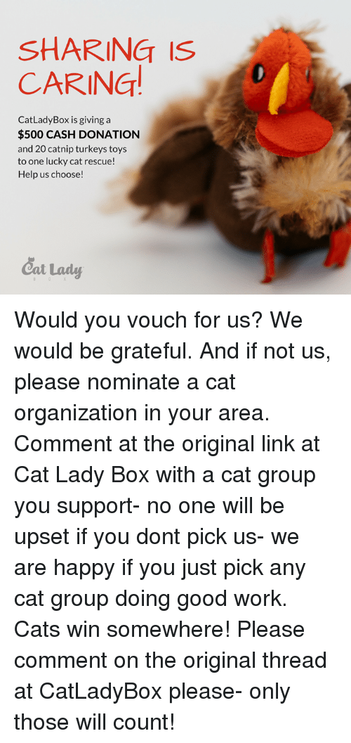 37f74087a0a2 SHARING IS CARING Cat Lady Box Is Giving a  500 CASH DONATION and 20 ...
