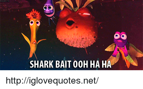 Shark, Http, and Net: SHARK BAIT 0OH HA HA http://iglovequotes.net/