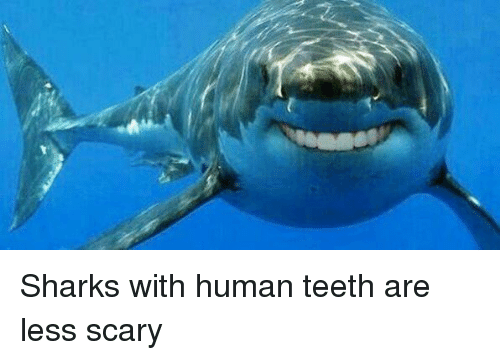 Funny, Shark, and Sharks: Sharks with human teeth are less scary