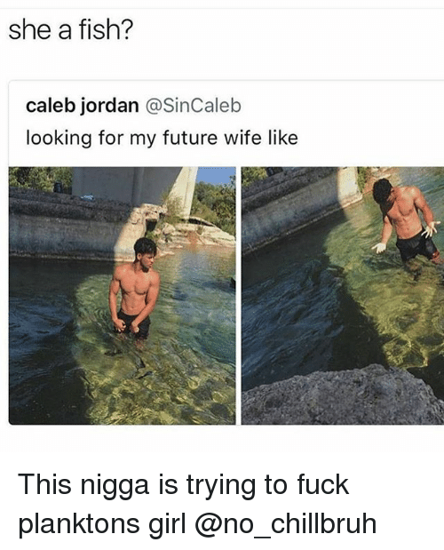 Funny, Future, and Fish: she a fish?  caleb jordan @SinCaleb  looking for my future wife like This nigga is trying to fuck planktons girl @no_chillbruh